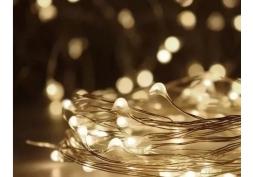 Fio de Luzes LED 30 Prata